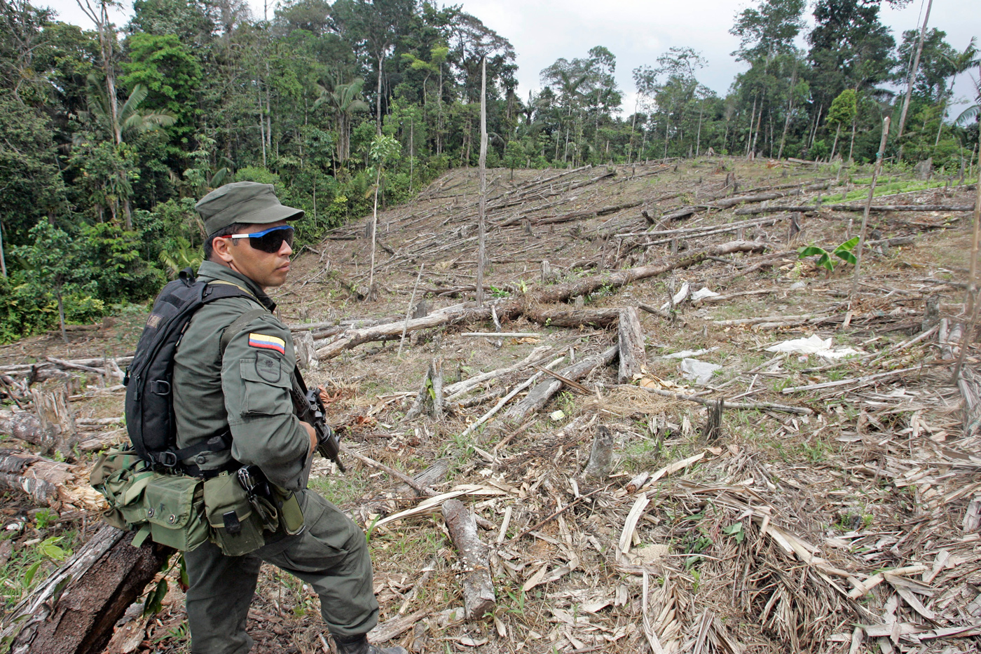issue of devastation of the rainforest Spurred by rising global demand for the metal, miners are destroying invaluable  rainforest in peru's amazon basin.